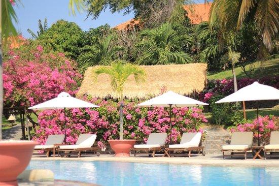 Victoria Phan Thiet Beach Resort & Spa: Бассейн
