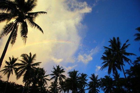 Maravu Taveuni Lodge: 彩虹