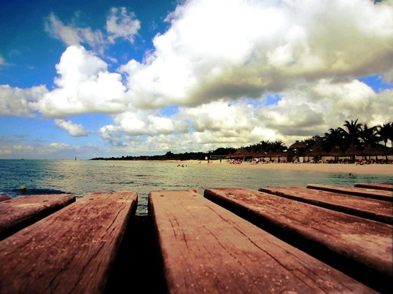 Occidental Cozumel: I used this as my background photo - dock view