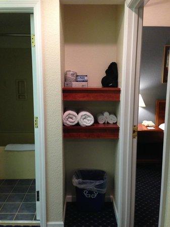 Varsity Clubs of America: Shelving in vanity area