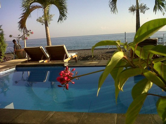 Lucky Paradise Bungalows : pool view