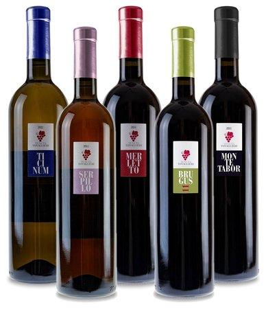 Tenuta Tovaglieri: i nostri vini