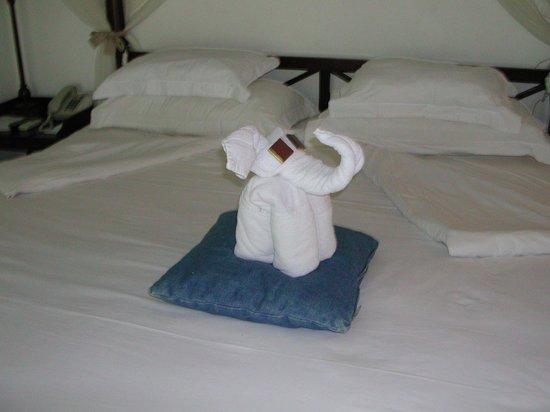 20 Degres Sud Hotel: éléphant réalisé avec serviette de toilette