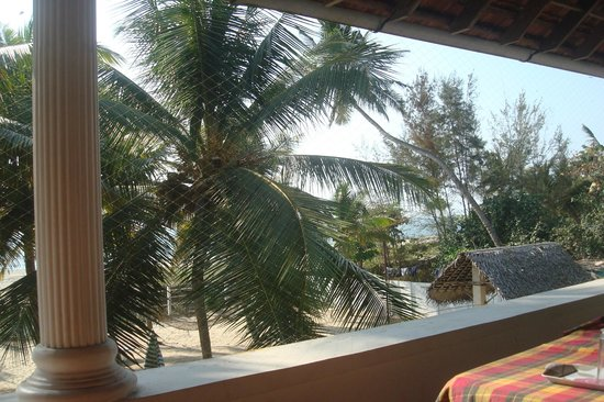 Alleppey Beach Resorts: View from room with protective net for crows/pigeons