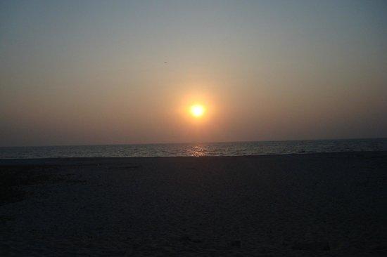 Alleppey Beach Resorts : Sunset