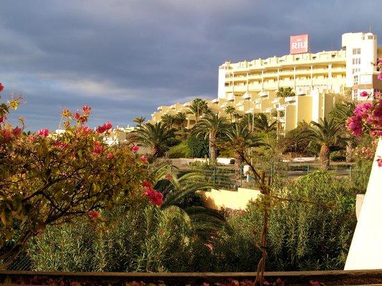 Sol Jandia Mar Apartamentos: Aussicht vom Balkon