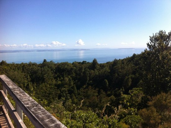 Rangitoto Island: From the summit of Rangitoto