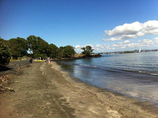 Rangitoto Island: Mckenzie Bay