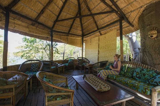 Mumbo Island: Mumbo's peaceful lounge area under a baobab treee