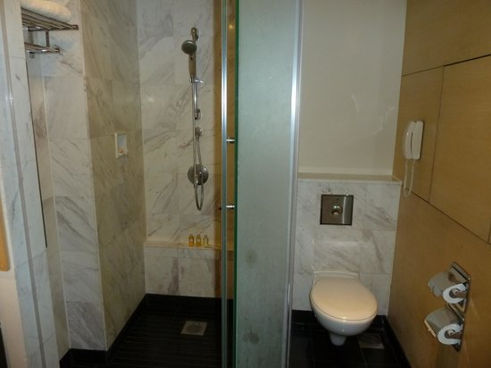 ParkRoyal Kuala Lumpur: Shower/Toilet