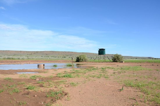 Namseb Lodge: Waterhole