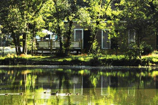 Varennes sur Loire, France : Etang