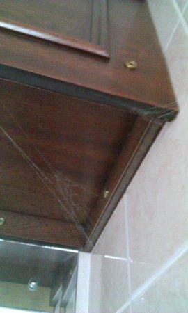 Great Southern Hotel Sligo: Spider web