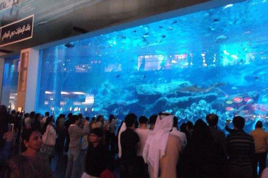 Dubai Shopping Centre: :)