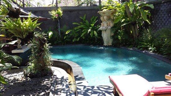 The Bali Dream Villa Seminyak : Pool