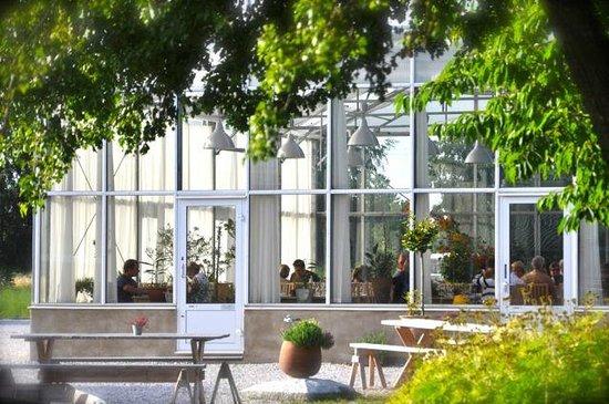 Gotland singel kvinna - Agriturismo Pingitore