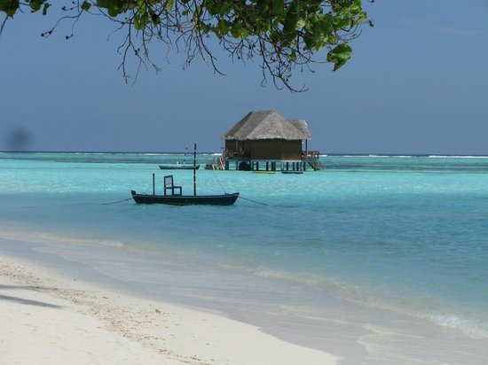 Meeru Island Resort & Spa : Beach view