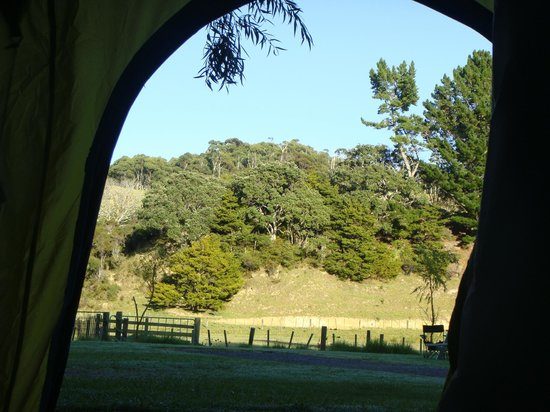Tutukaka Holiday Park: Room (Tent) with a view.