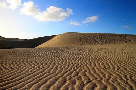 Parque Natural de Corralejo: Dunes with ripples