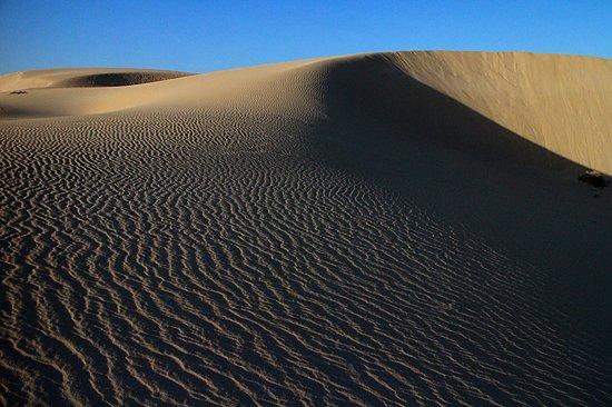 Parque Natural de Corralejo: Dune patterns