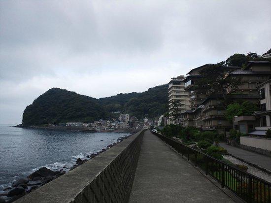 Hokkawa Onsen Hotel: 北川温泉街