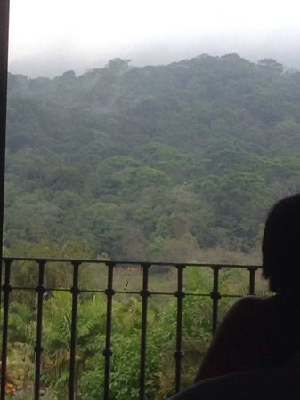 Arenal Kioro Suites & Spa: View from room 204