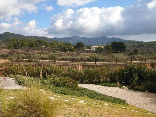 Finca El Pao: Vue magnifique de notre chambre