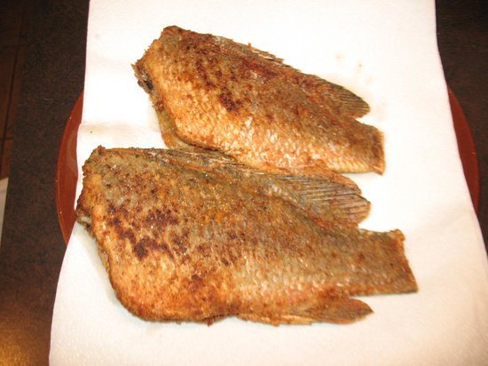 Bent Charters Fishing : Pan fried snapper