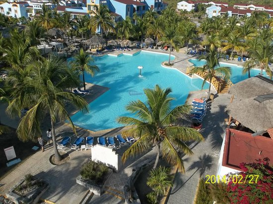 Nager avec les dauphins picture of hotel pelicano cayo for Club piscine montreal locations