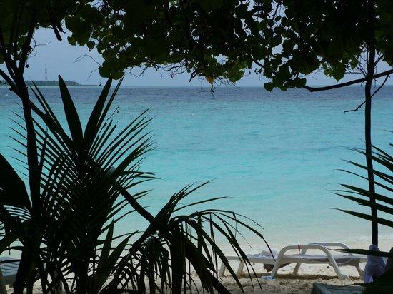 Adaaran Club Rannalhi: Aussicht zwischen den Palmen