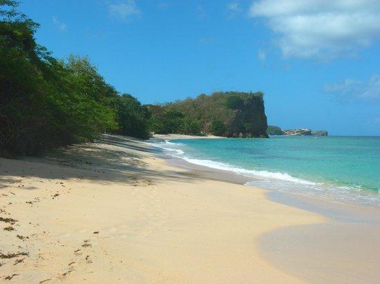 Laluna Hotel : Beach