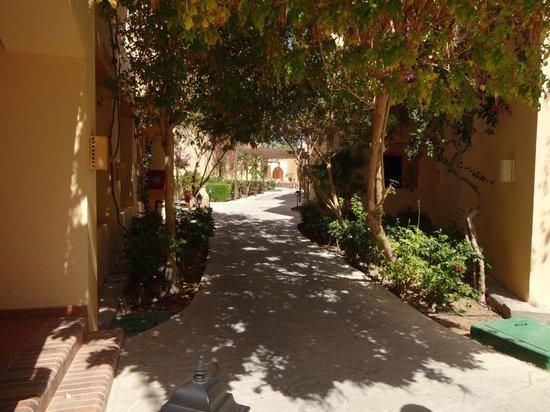 Steigenberger Coraya Beach: Pathways to Rooms