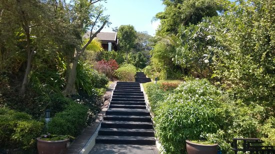 Anantara Lawana Koh Samui Resort: Steps