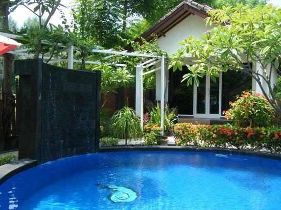 Danima Resort & Restaurant: Poolside room - view from dining area.
