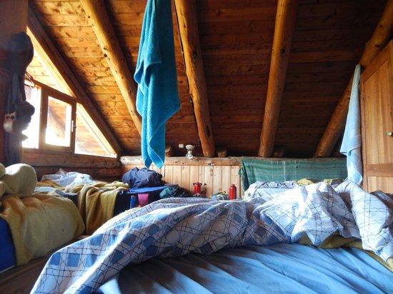 El Pueblito EcoHostel: 6 bed roof dormitory