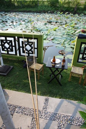 Phu Thinh Boutique Resort & Spa : fishing in the pond