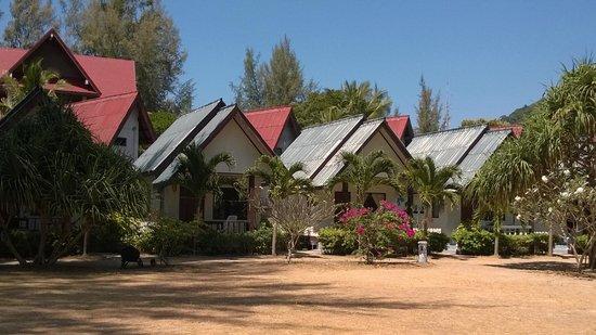 Khlong Dao Beach Bungalow : Bungalows