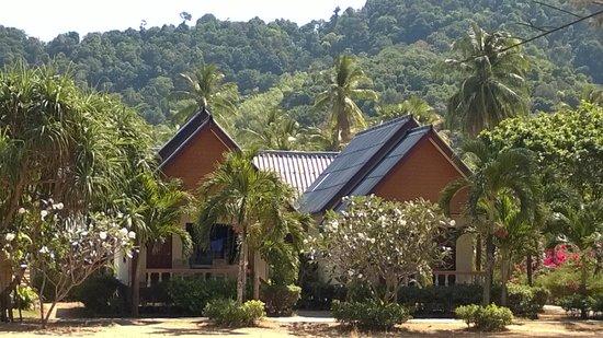 Khlong Dao Beach Bungalow : Beach-front bungalows