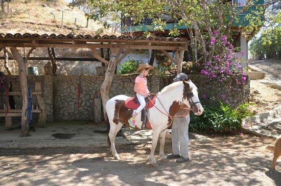 Finca Caballo Loco - Horse Tours Costa Rica: Getting ready for the ride