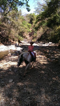 Finca Caballo Loco - Horse Tours Costa Rica: Crossing a picturesque stream on horseback