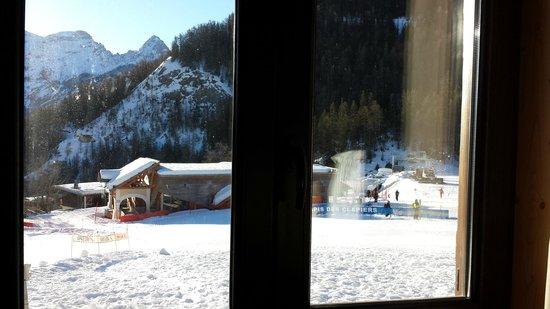 Hotel Le Loup Blanc : Vue de la chambre du chalet n°4