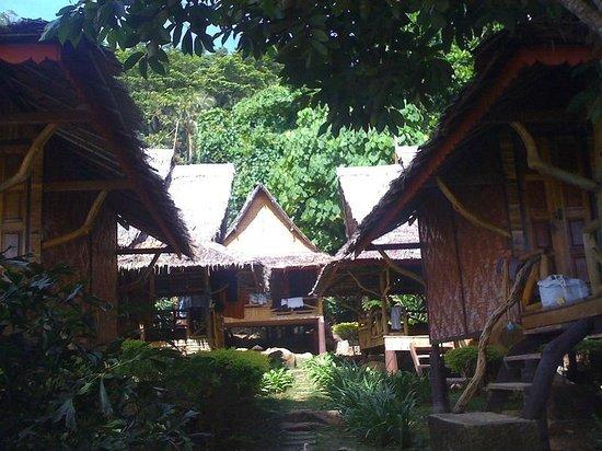 Phi Phi Relax Beach Resort: walking aisle between bungalows