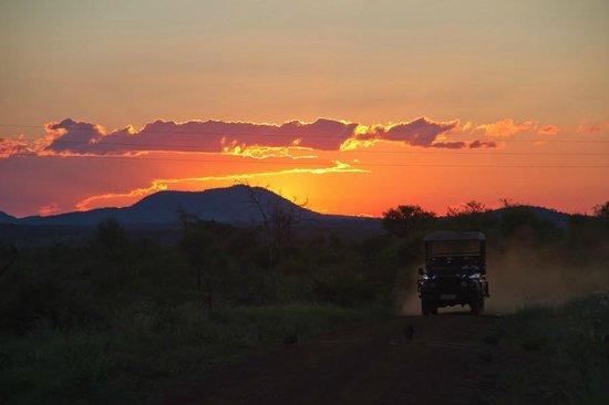 Madikwe Hills Private Game Lodge: Madikwe Sunset