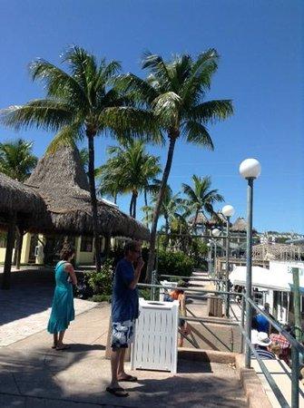 Holiday Inn Key Largo: marina from hotel