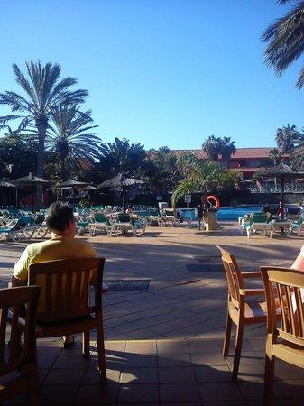 Oasis Village : pool side