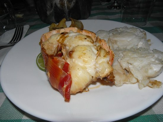 Casa OsmaryAlberto: Lobster and fish