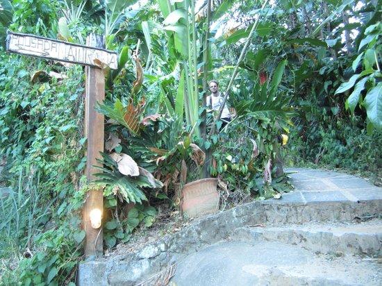 Pousada Naturalia: Entrance to Naturalia