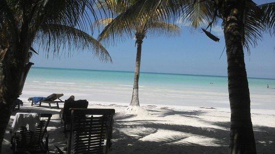Beachfront La Palapa Hotel Adult Oriented : Unos pasos separan el hotel del mar...espectacular playa