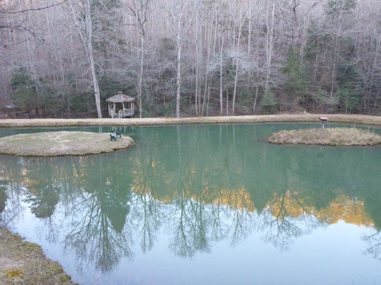 Cavender Creek Cabins Resort: Cavender Creek Pond