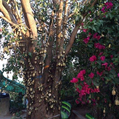 Grand Bouddha de Phuket : Klockor i mängder, som spelar med vinden... Rogivande!